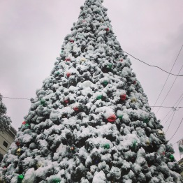 Natchez Snow Day