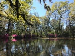 Pond at Afton Villa
